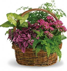 corporate gift flowers, sympathy basket, funeral plants
