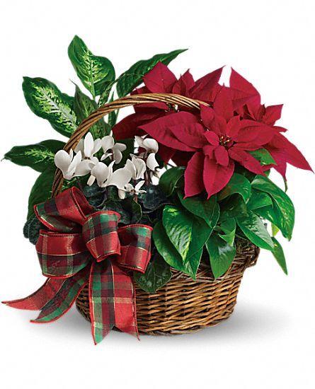 Holiday Homecoming Planter Basket