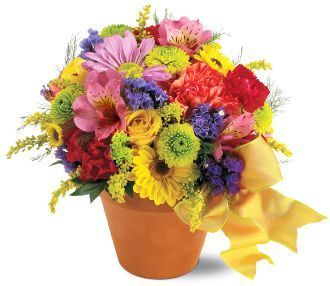 seasonal blooms, carnations, daisy, alstroemeria, spray mums