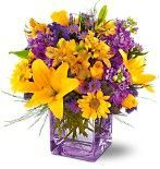 lilies, mums, yellow bouquet, purple bouquet