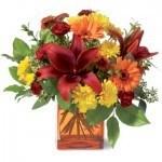 Autumn Flowers, Asiatic Lilies, gerberas