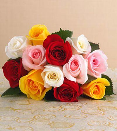 Rose Special