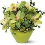Shades of Green Bouquet