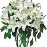 Perfect White Lily Bouquet