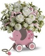 Buy Flowers Ludington MI : Local Florist Ludington MI