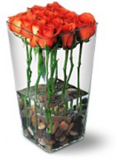 Roses with River Rocks