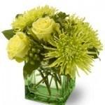 green, roses, chrysanthemums,hypericum